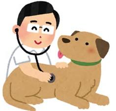 獣医.png