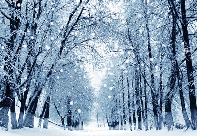 「雪 画像」の画像検索結果