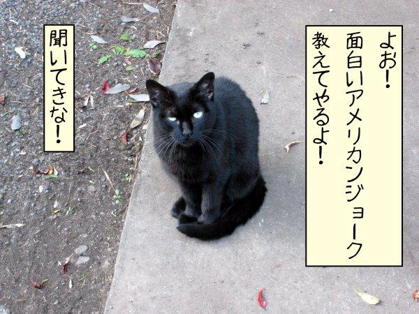 joke_01.jpg